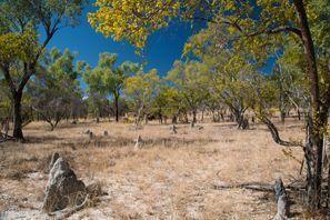 Mietauto Miles, Australien