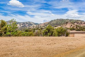 Mietauto Muswellbrook, Australien