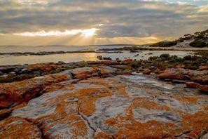 Mietauto Orange, Australien