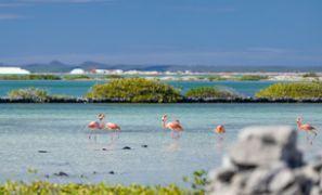 Leihauto Bonaire