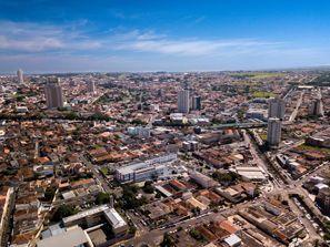 Mietauto Franca, Brasilien