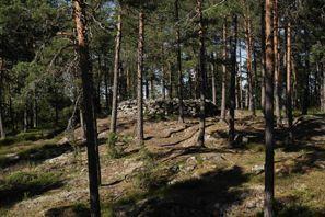 Mietauto Paimio, Finnland