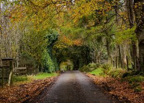 Mietauto Omagh, Nordirland