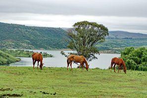 Mietauto Estcourt, Südafrika