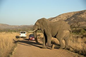 Mietauto Klerksdorp, Südafrika