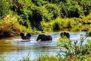Mietauto Phalaborwa, Südafrika