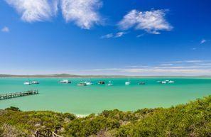 Mietauto Saldanha, Südafrika